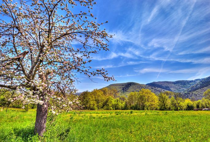 Весна 382 обои горы 672 природа обои небо