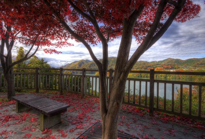 Природа горы озера красота осень