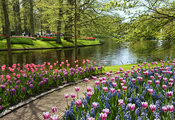 нидерланды, парк, garden of europe, Keukenhof, netherlands, цветы