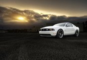форд, мустанг, белый, mustang, white, Ford, gt, front, muscle car, 5.0