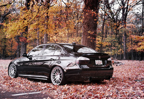 бмв, Bmw, тачки, 335i, auto wallpapers, cars, авто обои
