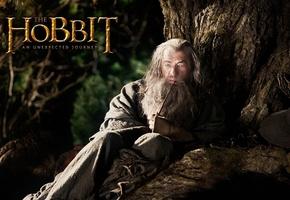 Kino-Tipp: Der, hobbit - Smaugs Einöde - Deluxe Music