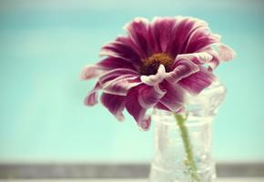 Affordable Wedding Centerpieces Original Ideas Tips amp DIYs!