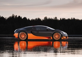 ������, veyron, ������, �������, �����, sports, super, �����, Bugatti