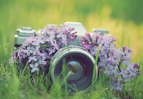 Картинки фотокамера - 35