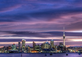 skyscrapers, city center, sky, city, окленд, new zealand, sky tower, Auckland, harbour